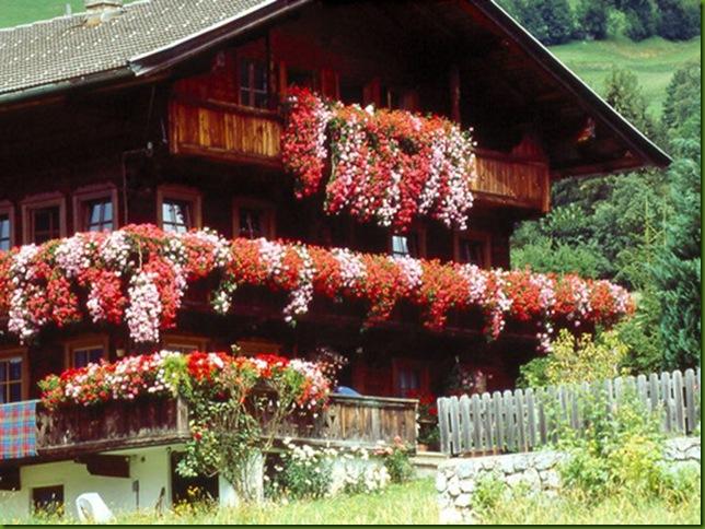 Balcón florido en Alpbach, Tirol, Austria 2