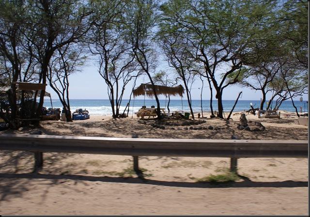 Kaena Beach 085