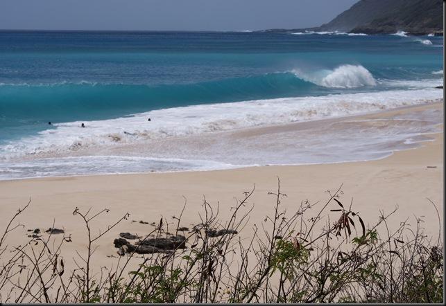 Kaena Beach 060