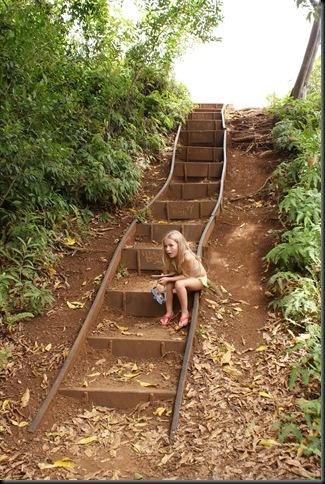 Maunawili hike 146