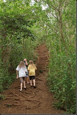Maunawili hike 170