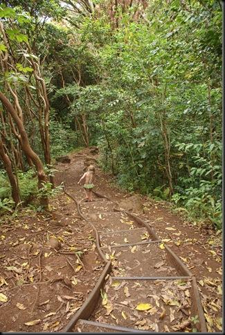 Maunawili hike 187