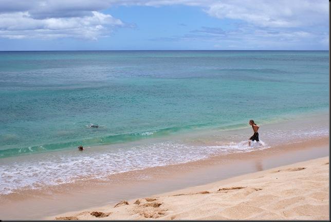 Turtle Beach 012