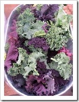 kale, red and green