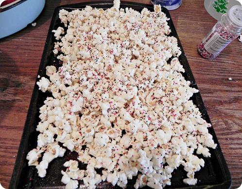 popcorn 021