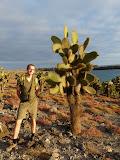 L'homme cactus