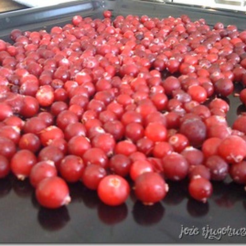 torka tranbär i ugn