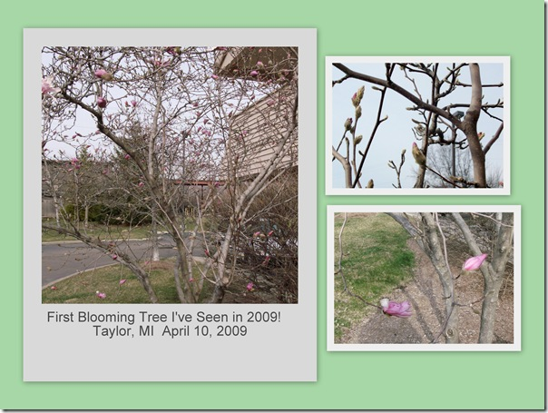 April 19 2009 Easter Trip