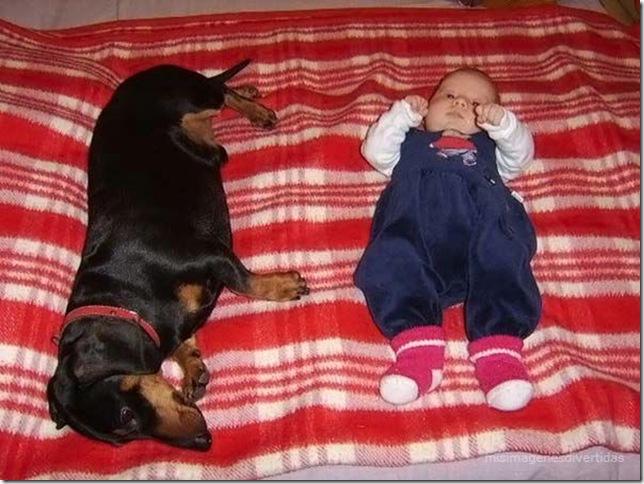 1 - niños con perros misimagenesdivertidas
