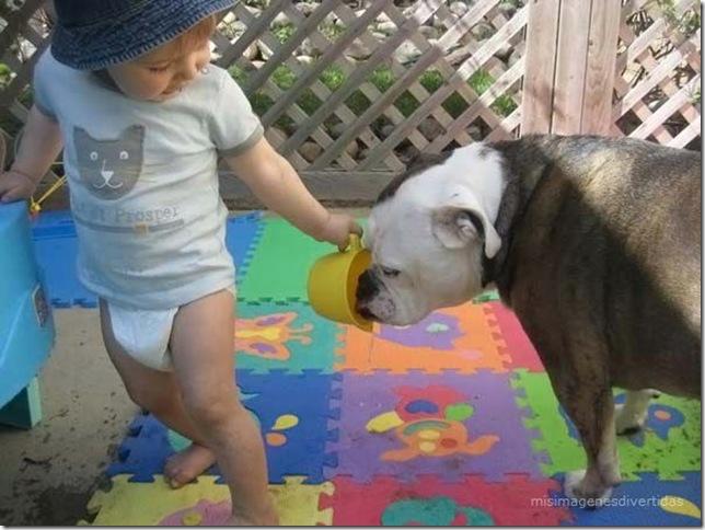 1 - niños con perros misimagenesdivertidas  (4)