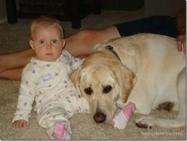 1 - niños con perros misimagenesdivertidas  (16)