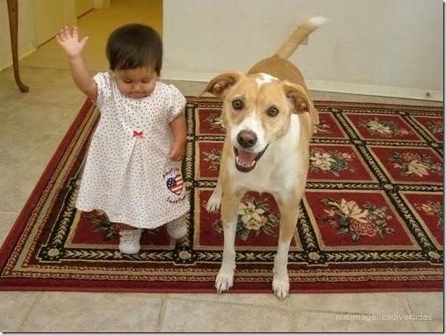 1 - niños con perros misimagenesdivertidas  (13)