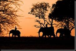 sudafrica-1