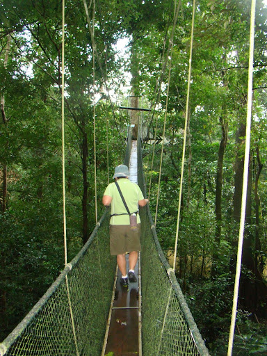 Mulu Park Tree Top Walk