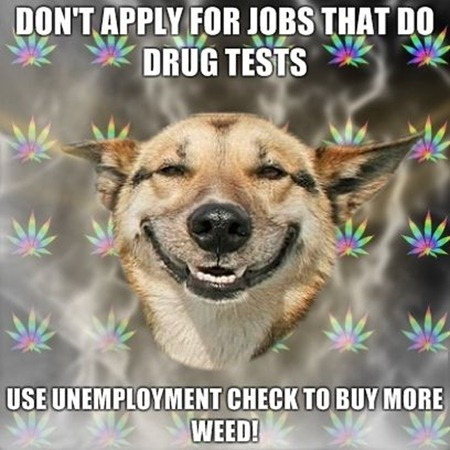 Dont-apply-for-jobs-that-do-drug-tests-Use-unemployment-check-to-buy-more-weed