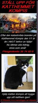 katthemmet-kompis-banner-signerad2_67447745