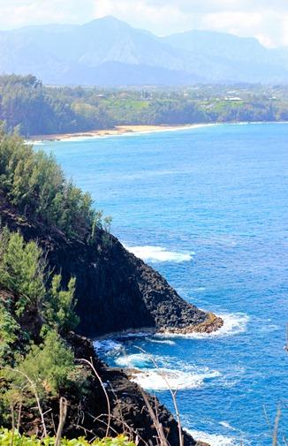 2011-02-25-Kauai-006web