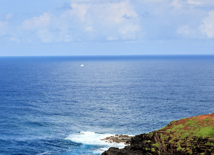 2011-02-25-Kauai-012web