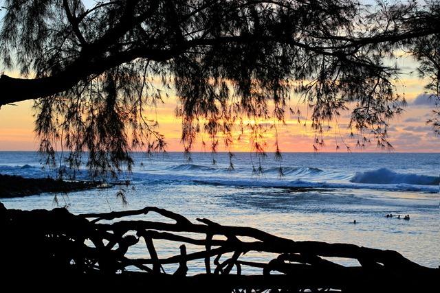 2011-02-28-Kauai-081web