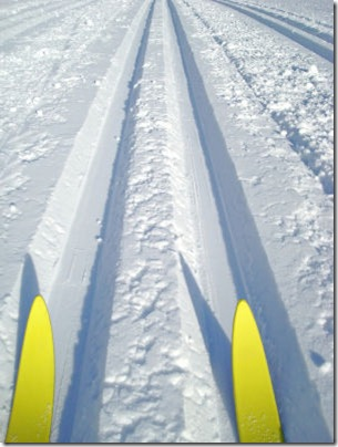 buying-cross-country-skis.s600x600