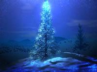 XMAS-Night Tree Halo.jpg