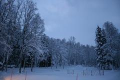 vinterland-2