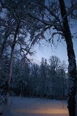 vinterland-8