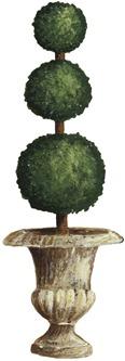 Topiary03