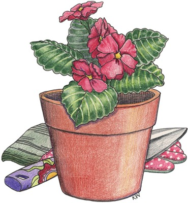 Potted Flower02