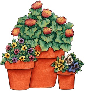 Potted Flowers02