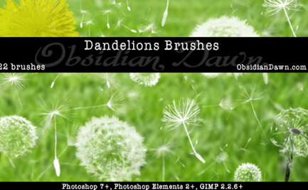 Diente de leon BRUSHES