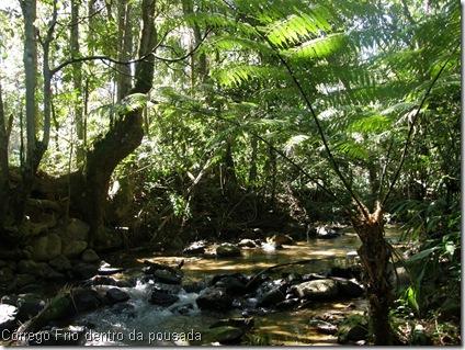 B Córrego Frio com samambaiaçu