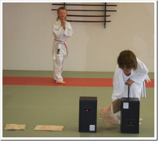 Karategradering vt 2010 003