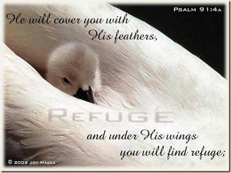 psalm91_4