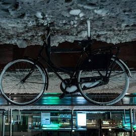 Bike by Nathalie De Held-Buijtendijk - Transportation Bicycles