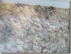 scouring fleece 016