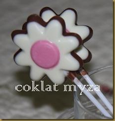Coklat 16.3.2011 009
