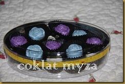 Coklat 16.3.2011 085