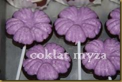 Coklat Myza 19.3.2011 016