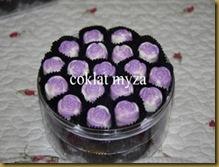 Coklat 1.4.2011 006