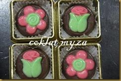 Coklat 26.7.2011 011
