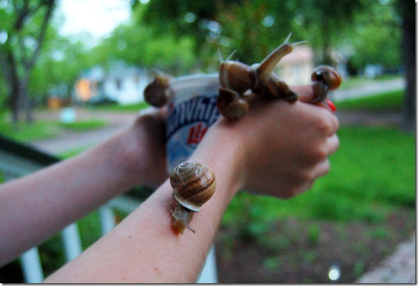 snails5