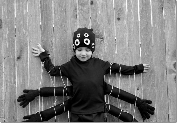 spider6
