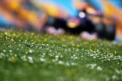Себастьян Буэми Toro Rosso на трассе Истамбул-Парка Гран-при Турции 2011