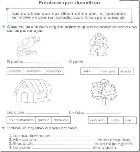 Ejercicio Adjetivos calificativos – primer grado de primaria