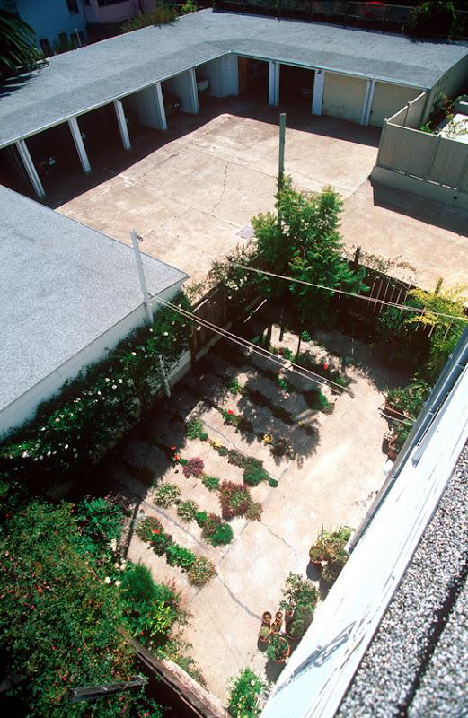 The Crack Garden