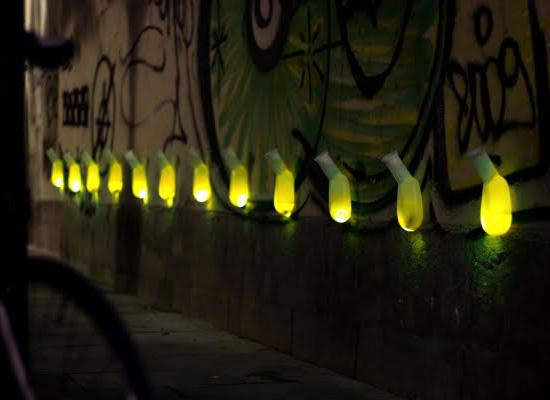 Luz Interruptus