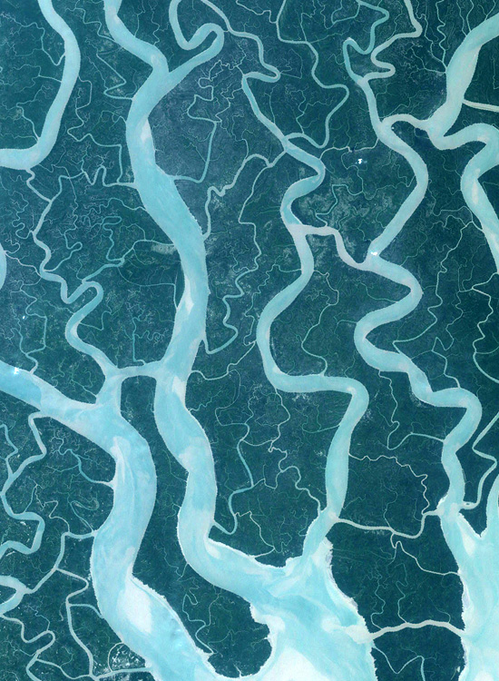 The Sundarbans of Bangladesh and India