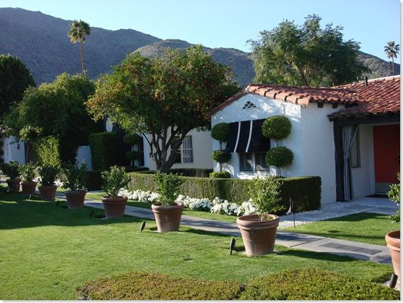 Palm Springs 3 125