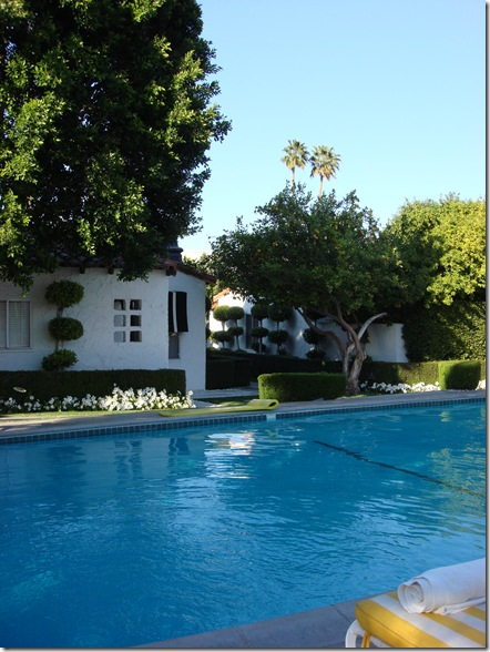 Palm Springs 3 131